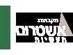 логотип ashtrum